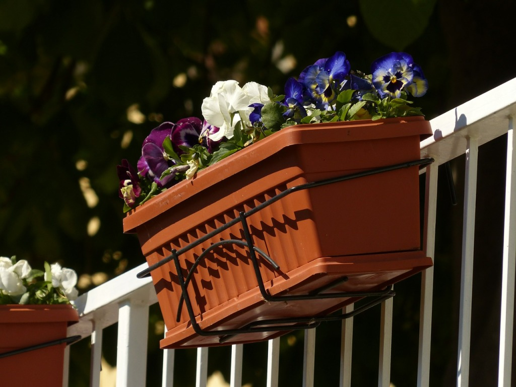 balcony-plants-357702_1280